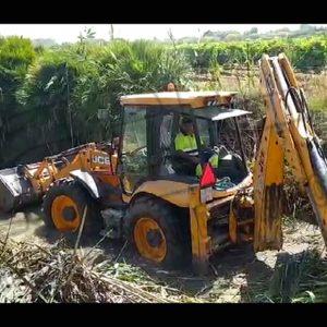 Agricultura inicia las tareas de limpieza del colector del  pinar de Chipiona